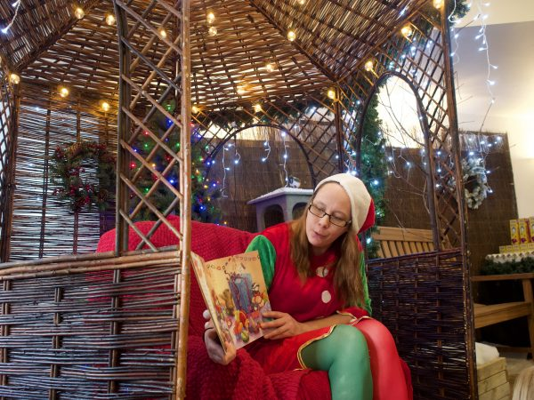 Elf reading Christmas story